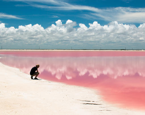 A man looking at a pink sea.