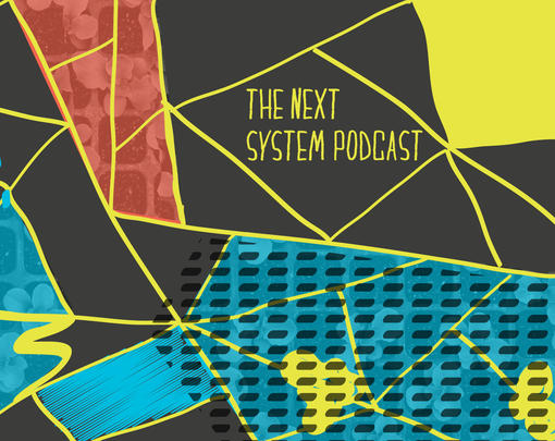 The Next System Podcast