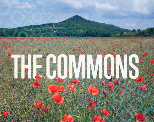on a field with flowers, the word commons is displayed with a ghostly geometric pattern underneath the image.
