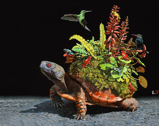 A turtle with an ecosystem on its back