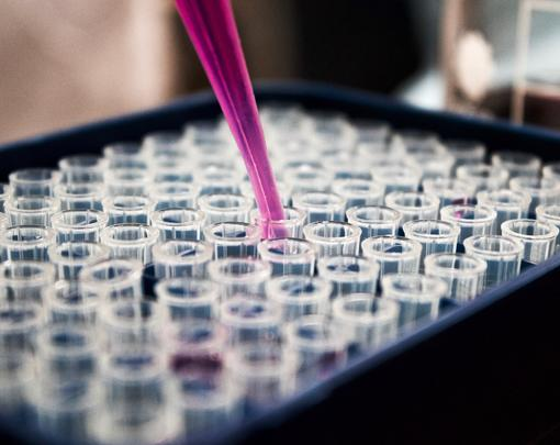 A pipette being dipped into an array of testtubes