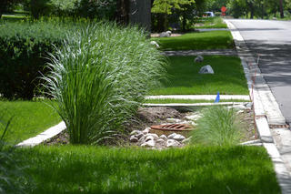 A bioswale provides an attractive way for water to drain into the soil